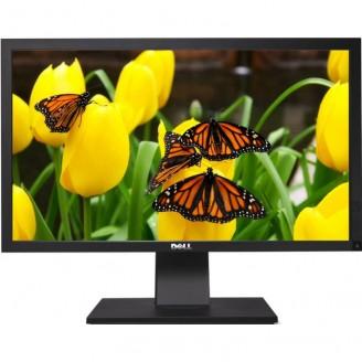 Monitor Profesional Full HD Dell P2411Hb, 24 inch LED-Backlight, 5 ms, VGA, DVI, USB, 1920 x 1080, Grad A-
